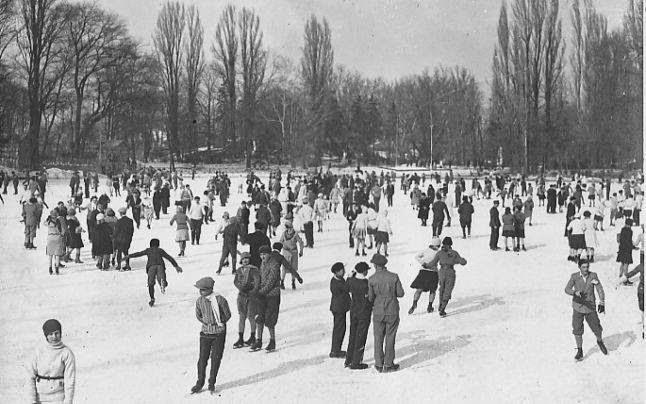Istoria patinelor