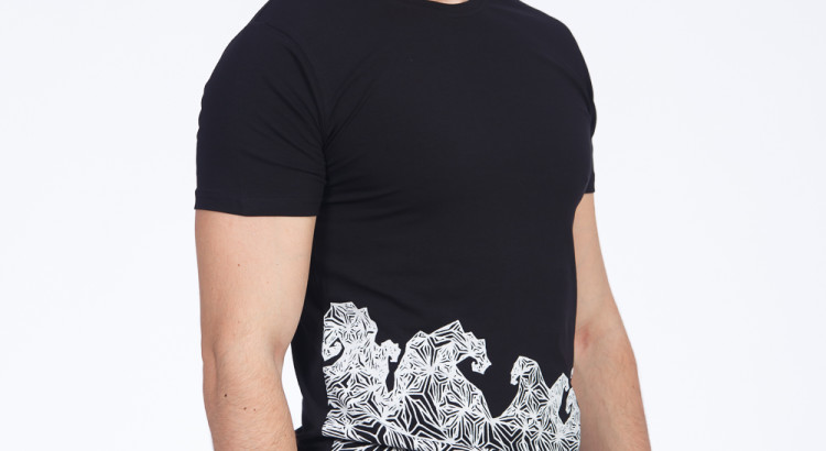 De ce factori vei tine cont cand vei cumpara un tricou?