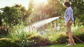 7 sfaturi pentru udarea gradinii