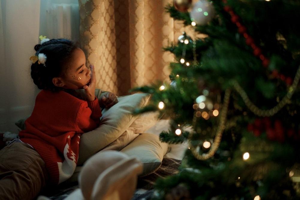 Am cumparat de la BraziCraciun.net brazi de Crăciun de calitate